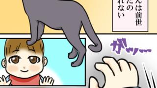 男の子2人兄弟ブログの育児漫画。次男の前世は猫だったのかもしれない。